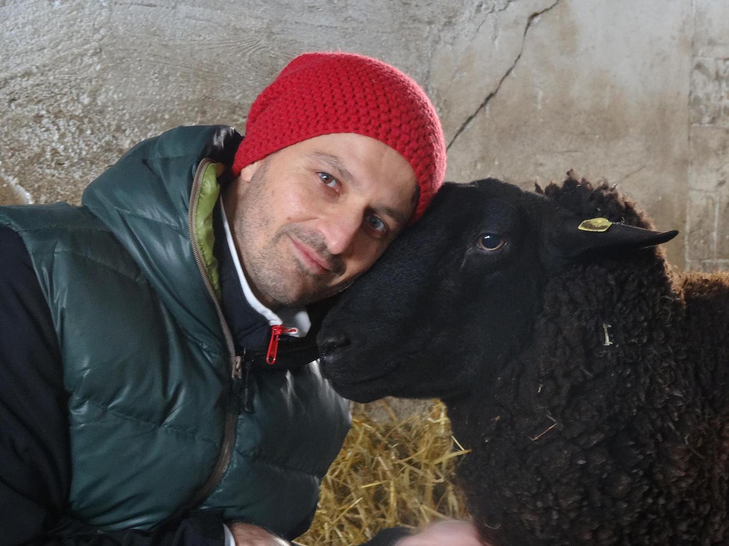 Schwarzes Schaf mit Mann