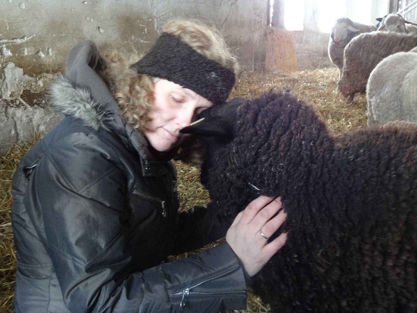 Betriebsausflüge schwarzes Schaf