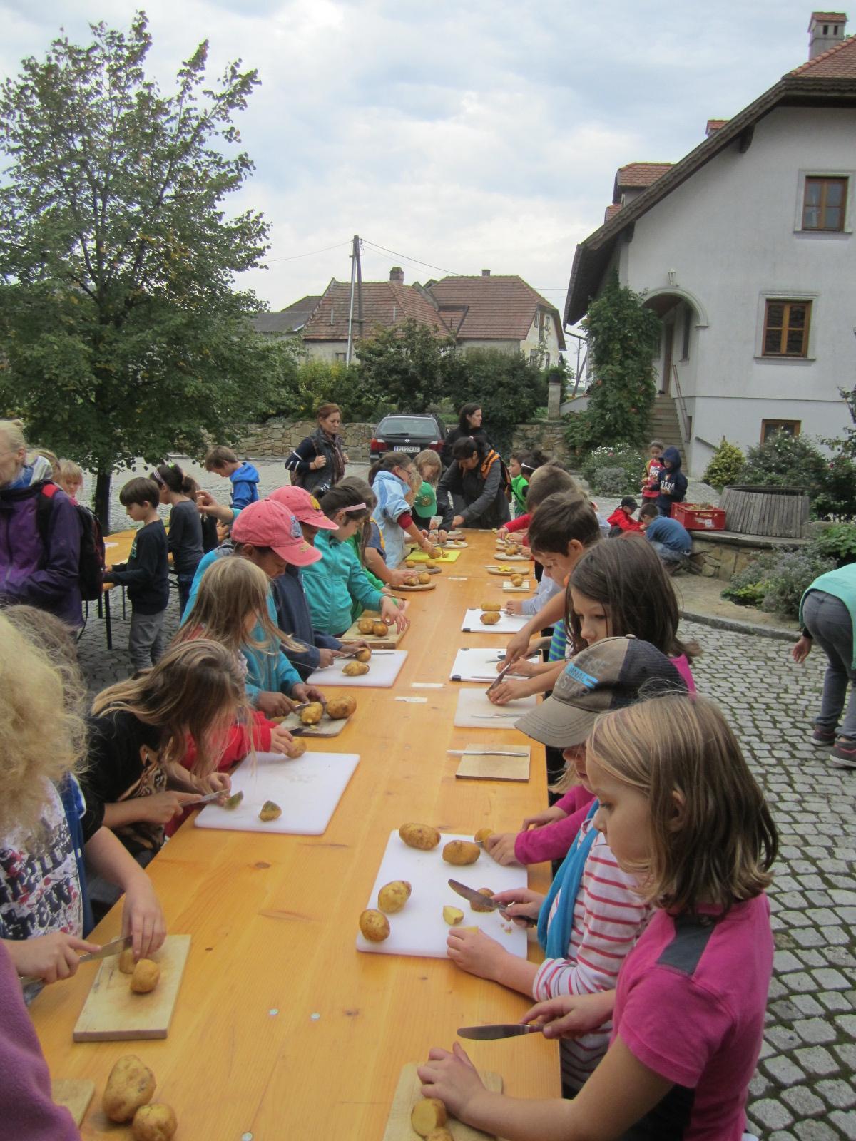 Kinder schneiden Kartoffeln
