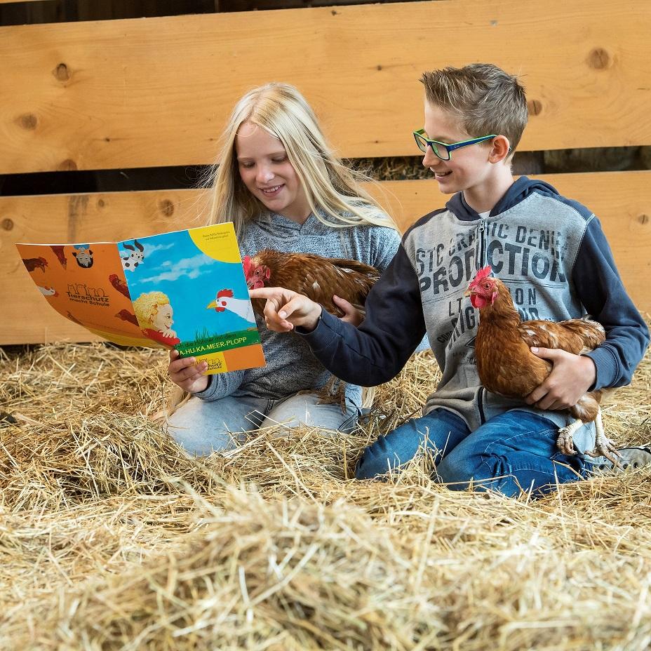 Schule am Bauernhof Kinder im Hühnerstall