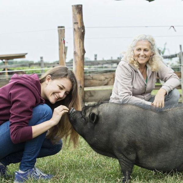 3er-Hof Akademie Eva Hieret mit Hängebauchschwein