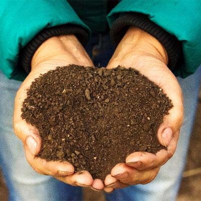 Kompost in Händen