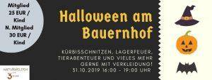 Halloween Kindererlebnis