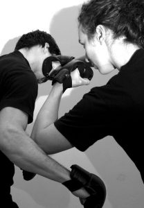martial arts seminare